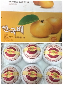 BUAH KOTAK PEAR KOREAN SINGO GP 10 KG 22143026 2022010020047