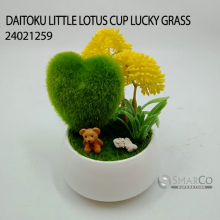 DAITOKU LITTLE LOTUS CUP LUCKY GRASS 24021259