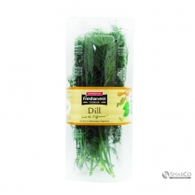 HERBS DILL PACK 8888030062548